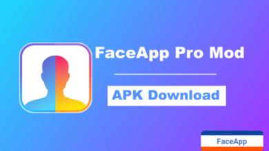 FaceApp Pro, Faceapp Mod Apk